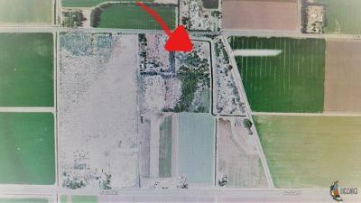 Imperial Farm For Sale: 111 Ralph Rd