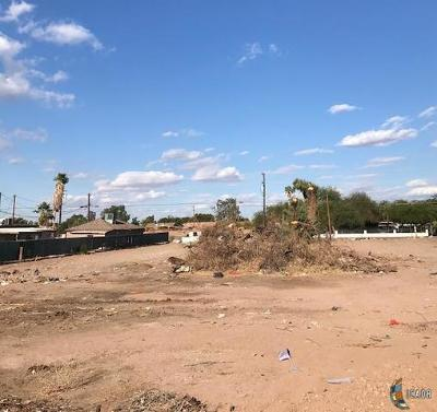 Calexico Residential Lots & Land For Sale: 1235 C N Perry Rd