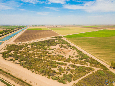 Calexico Farm For Sale: 405 Hawk Rd