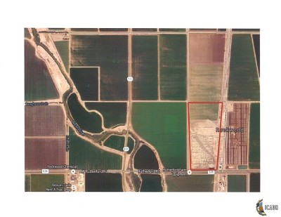 Brawley Commercial Lots & Land For Sale: 206 Rutherford Rd.