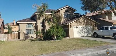 Calexico Single Family Home For Sale: 2206 R Carrillo Ct