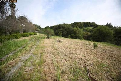 Orinda Residential Lots & Land For Sale: 52 Coachwood Ter