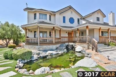Brentwood Single Family Home For Sale: 795 Silver Hills Drive