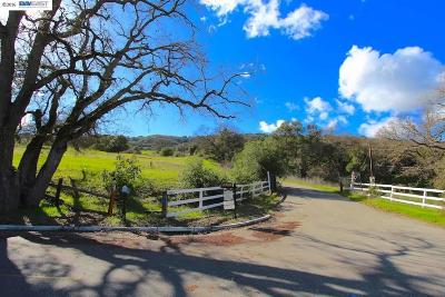 Pleasanton Residential Lots & Land For Sale: 3678 Foothill Road