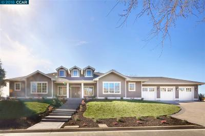 Danville, San Ramon, Dublin, Brentwood Single Family Home For Sale: 150 Hill Road