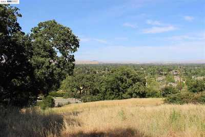 Pleasanton Residential Lots & Land For Sale: 3678 Foothill Rd
