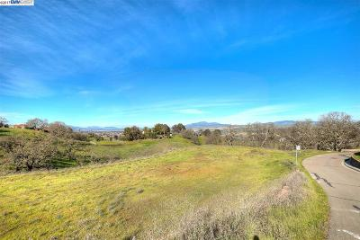Pleasanton Residential Lots & Land For Sale: #6 Winding Oaks Dr