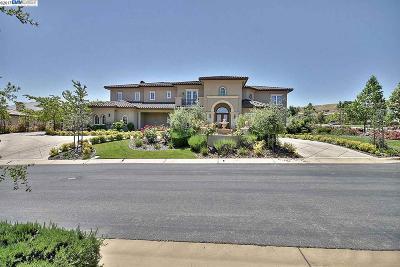 Pleasanton Single Family Home For Sale: 1807 Sannita Place
