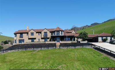 Danville CA Single Family Home For Sale: $7,500,000