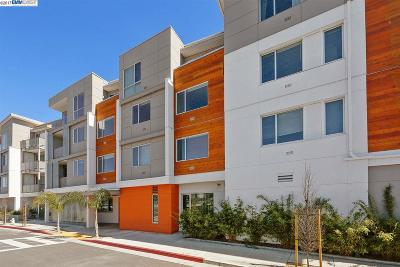 Oakland Condo/Townhouse For Sale: 340 29th Ave #306