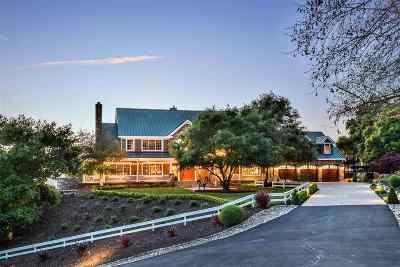 Danville, San Ramon, Alamo, Pleasanton, Livermore, Dublin Single Family Home For Sale: 200 Summit Ranch Rd