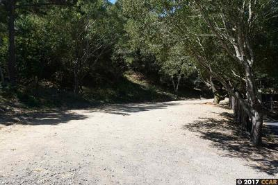 Orinda Residential Lots & Land For Sale: 42A Crestview Drive