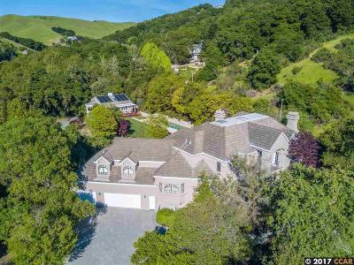 Moraga Single Family Home For Sale: 21 Merrill Circle South