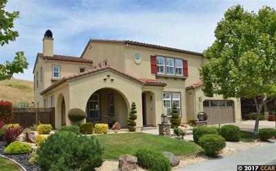 San Ramon Single Family Home For Sale: 416 Bridle Ct