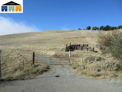 Livermore Residential Lots & Land For Sale: Morgan Territory Rd