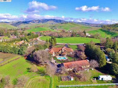 San Ramon Single Family Home For Sale: 5655 Bruce Drive