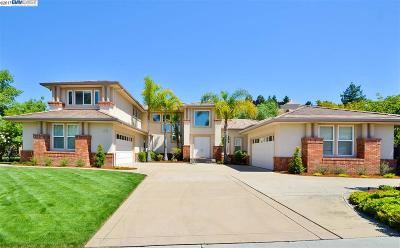 Fremont Single Family Home For Sale: 48365 Avalon Heights Terrace