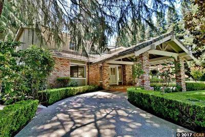 Alamo Single Family Home For Sale: 20 Kemline Ct