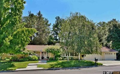Alamo Single Family Home For Sale: 121 Valley Oaks Dr