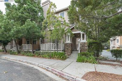 Dublin Condo/Townhouse Back On Market: 4825 Boxwood Way #115