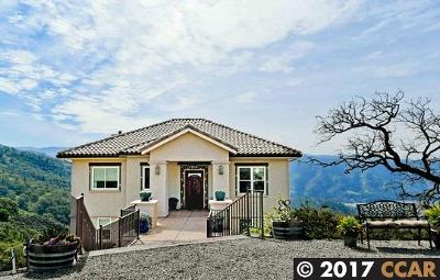 Livermore Single Family Home For Sale: 10651 Mendenhall Rd