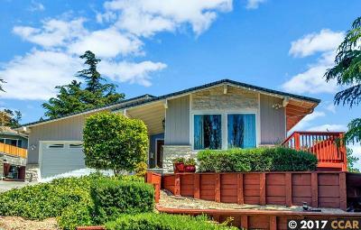El Sobrante Single Family Home For Sale: 28 Carter Ct