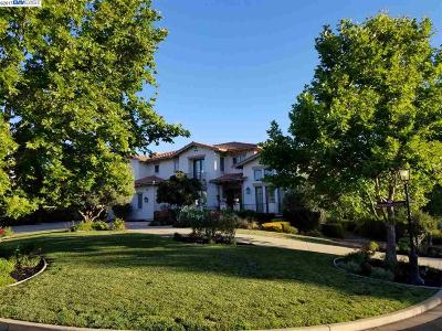 Pleasanton Single Family Home For Sale: 637 Norante Ct