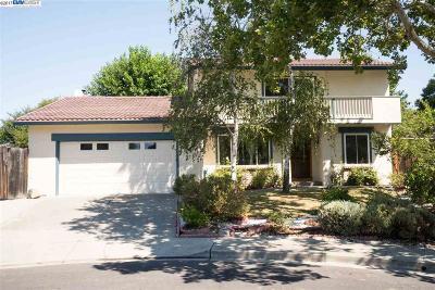 San Ramon Single Family Home For Sale: 53 Nead Pl