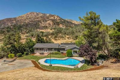 Clayton Single Family Home For Sale: 2611 Morgan Territory Rd