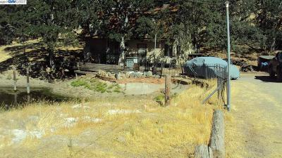 Livermore Residential Lots & Land For Sale: 21240 Mines