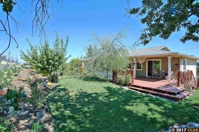 Martinez Single Family Home For Sale: 4776 Pacheco Blvd