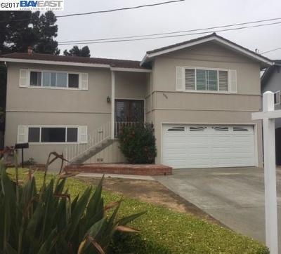 Castro Valley Single Family Home For Sale: 5346 El Caminito Ct