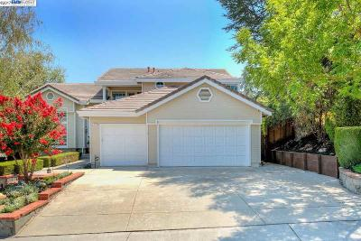 Pleasanton Single Family Home New: 812 Hopkins Way