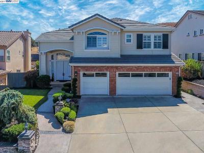 Dublin Single Family Home For Sale: 11149 Bay Laurel St