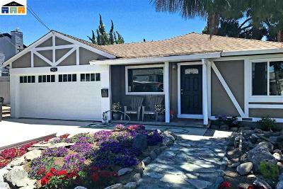 Castro Valley Single Family Home New: 4053 Greenacre Rd