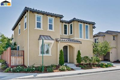 Livermore Single Family Home New: 193 Misty Cir
