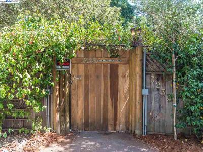 Lafayette Single Family Home For Sale: 3235 Camino Diablo