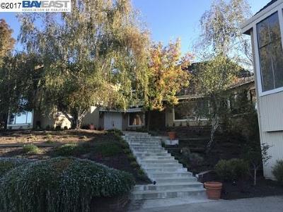 Alamo Single Family Home For Sale: 10 Kemp Ct.