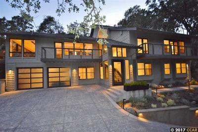 Alamo Single Family Home For Sale: 1007 Kirkcrest Ln