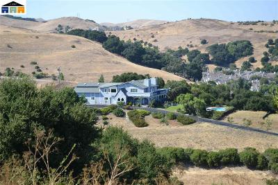 Pleasanton, Pleasanton Hills Single Family Home For Sale: 10705 Dublin Canyon Rd.