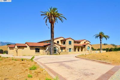 Dublin, Livermore, Pleasanton, Sunol, San Ramon Single Family Home For Sale: 7788 Laguna Heights Court