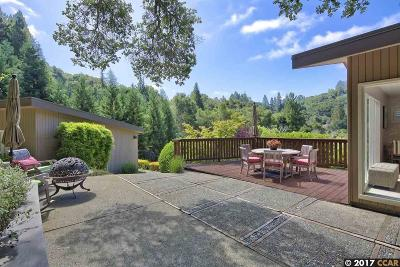Orinda Single Family Home For Sale: 726 Miner Road