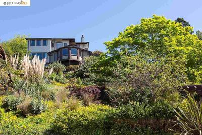 Berkeley Single Family Home For Sale: 683 Santa Barbara Road