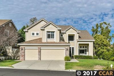Concord Single Family Home For Sale: 941 Dawnview Ct