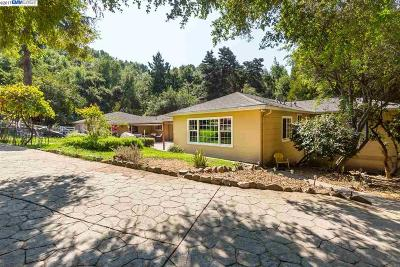 Castro Valley Single Family Home For Sale: 5015 Old Dublin Rd