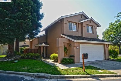 Danville, San Ramon Single Family Home New: 1069 Lakeridge Pl