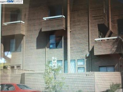Berkeley Condo/Townhouse Active-Short Sale: 2501 Dana Street #7