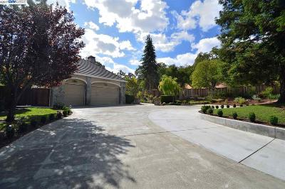 Pleasanton Single Family Home New: 3881 Foothill Road