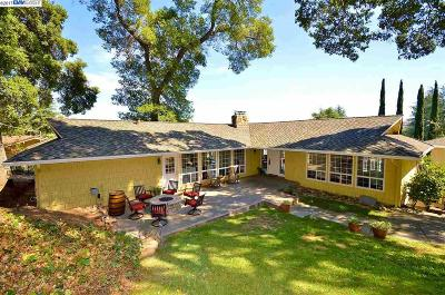 Pleasanton Single Family Home New: 789 View Drive