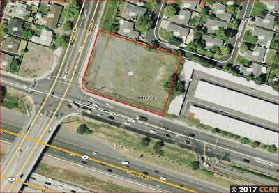 Pittsburg Residential Lots & Land For Sale: 501 California Ave
